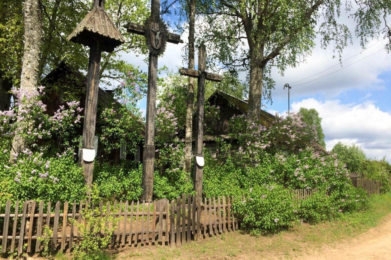 from vilnius to grutas park and dzukija national park